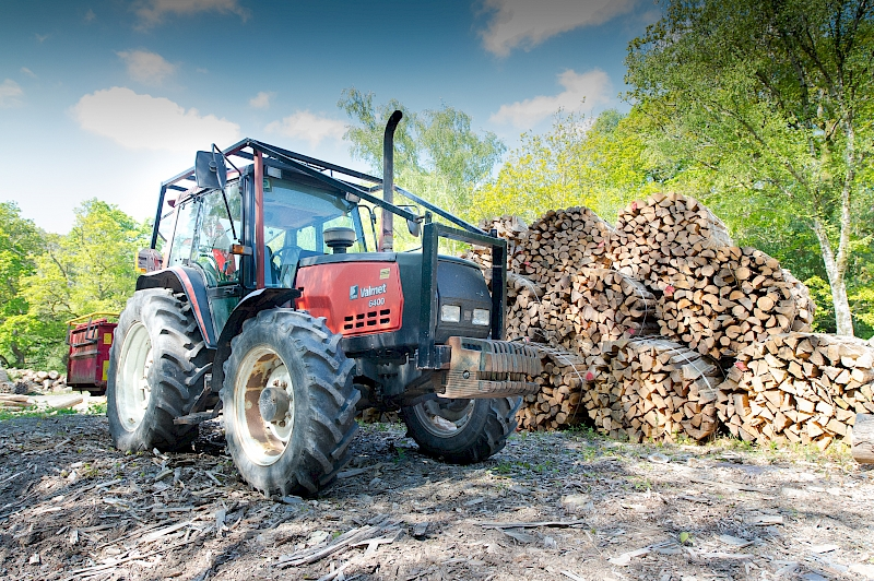 Where does our Firewood come from?